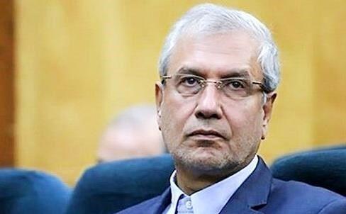 واکنش سخنگوی دولت به شعارهای انتخاباتی