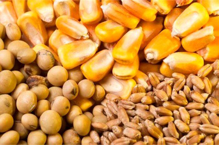 افزایش چشمگیر قیمت نهاده های کشاورزی