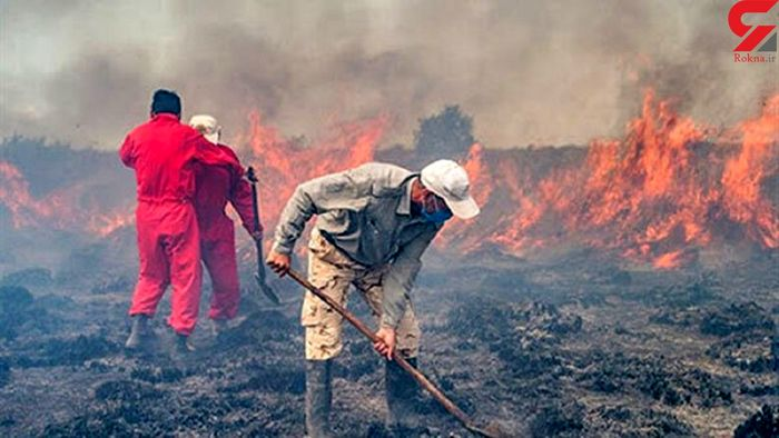 کشتکنندگان ماریجوآنا میانکاله را آتش زدند!