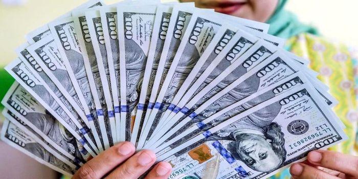قیمت امروز دلار اعلام شد (۱۴۰۰/۰۱/۱۹) + جدول