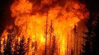 دلیل آتش سوزی بزرگ در ترکیه مشخص شد