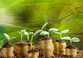 افزایش جذب سرمایه گذاری در منطقه ویژه خلیج فارس