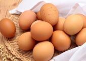 امان از تخم مرغ لاکچری!