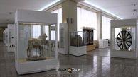 واکنش رییس موزه ملی ایران به مفقود شدن ۲ اثر تاریخی