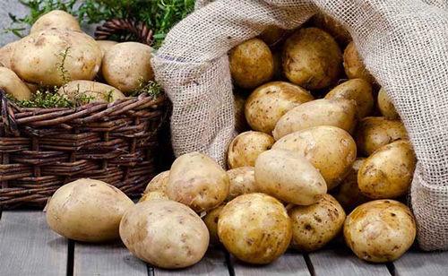عامل بهم ریختگی بازار سیب زمینی و پیاز مشخص شد