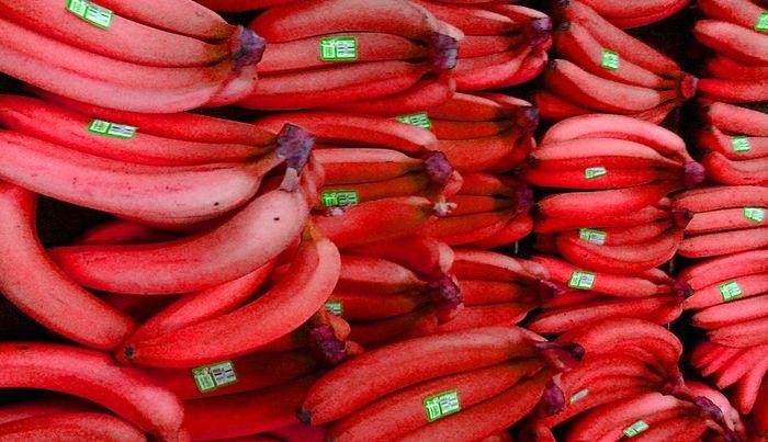 قیمت موز لاکچری /  ۱۸۰ هزار تومان ناقابل!