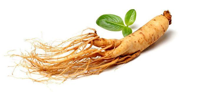 با گیاه جوانی آشنا شوید