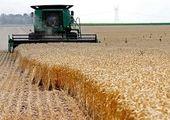 یوسفی:خسارت کشاورزان باید پرداخت شود