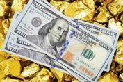 جدیدترین قیمت دلار و سکه در بازار