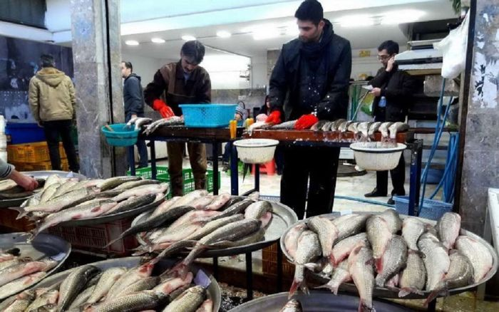 قیمت انواع ماهی در بازار روز (۹۹/۱۱/۰۸) + جدول