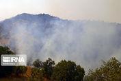 شهادت یک پاسدار در خاموش سازی جنگل های کرمانشاه