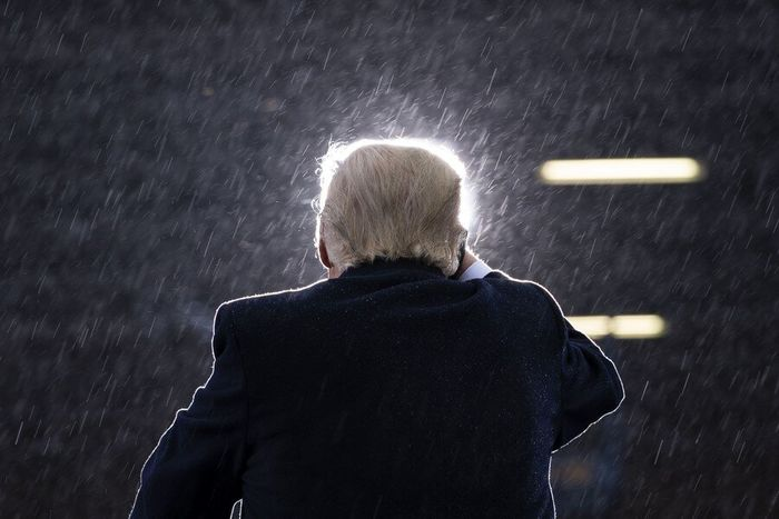 ترامپ افسرده شد