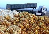پیاز و گوجه فرنگی همچنان در حال افزایش قیمت