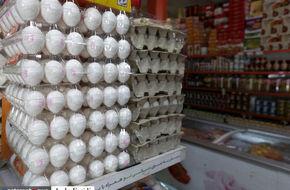 تصاویر/ داستان تخم مرغی که عزیز  شد!