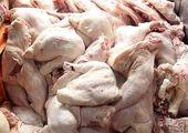 افزایش مجدد قیمت مرغ چقدر جدی است؟