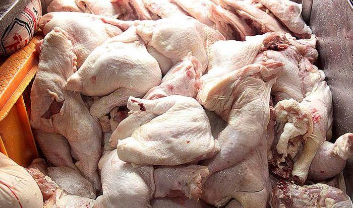 قیمت مرغ در بازار + جدول