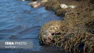 تصاویر / صید ماهی به روش پره