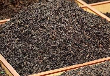 جدیدترین قیمت انواع چای در بازار + جدول
