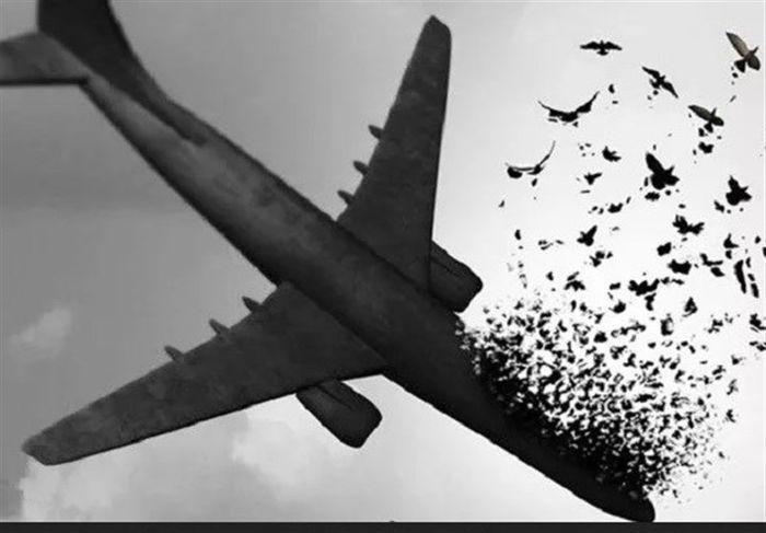 فوری/ناگفتههای پرونده سقوط هواپیمای اوکراینی
