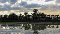 حال زمستانی استان بوشهر چطور است؟
