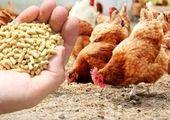 قیمت نهاده های دامی و کشاورزی در بازار (۹۹/۱۲/۱۱)