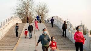 ویروس جی ۴؛ آنفلوآنزای خوکی جدید از چین+ فیلم