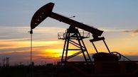 کاهش شدید تولید زغال سنگ، نفت و گاز در آمریکا