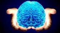 تکنولژی نور به کمک شناخت مغز می آید؟