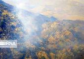فرار حیوانات پس از آتشسوزی در جنگلهای خائیز / فیلم