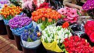 قیمت گل نصف شد
