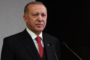 اردوغان با رفتن دامادش موافقت کرد